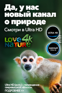 tricolor 4k nature ultra hd new